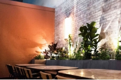 The Muse, Surry Hills