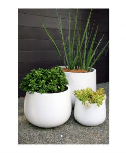 Smooth egg planter
