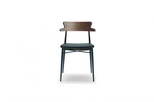 Zaira chair with arms